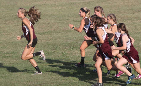 Girls cross country places second at McPherson