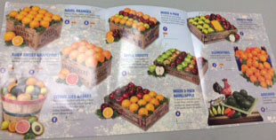 The FFA are selling many different varieties of fruit.