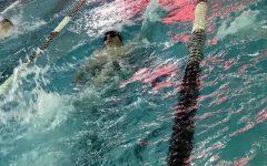 Boys swim takes fourth at WAC