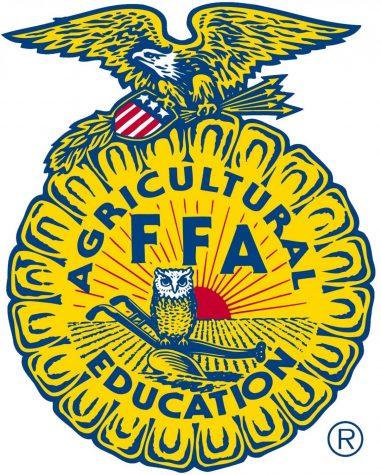 FFA competes at livestock contest
