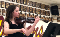 Orchestra hosts annual Ice Cream Concert