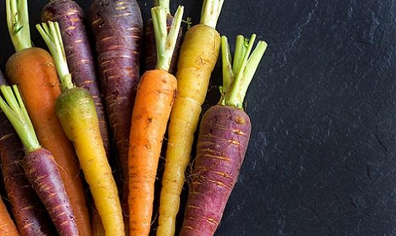 Fresh organic rainbow carrots