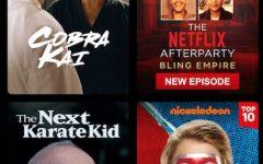 The title screen of Cobra Kai on Netflix