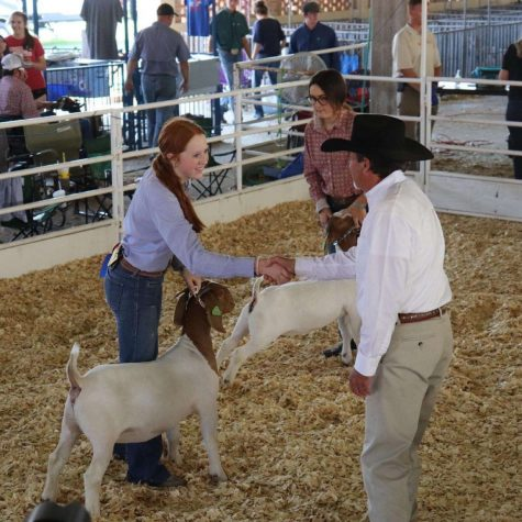 Junior Karli Neher shakes hands with one of the judges at the Kansas State fair.