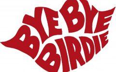 'Bye Bye Birdie' cast announced