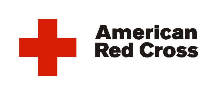Teacher starts Red Cross Club