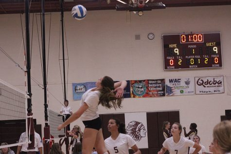 Volleyball places second at WAC