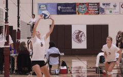 Volleyball goes 2-1 at home