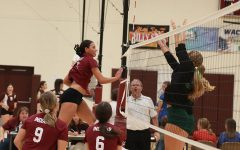 Volleyball ends home season with 2-0 finish