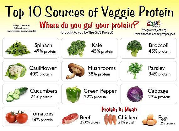The GIVE project did a survey on what vegetables give the most protein. Most vegetables give a higher percent of protein than meat products.