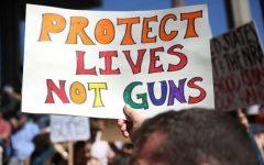 Gun control process needs to progress faster