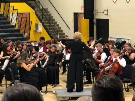 All City Strings Concert unifies young string musicians