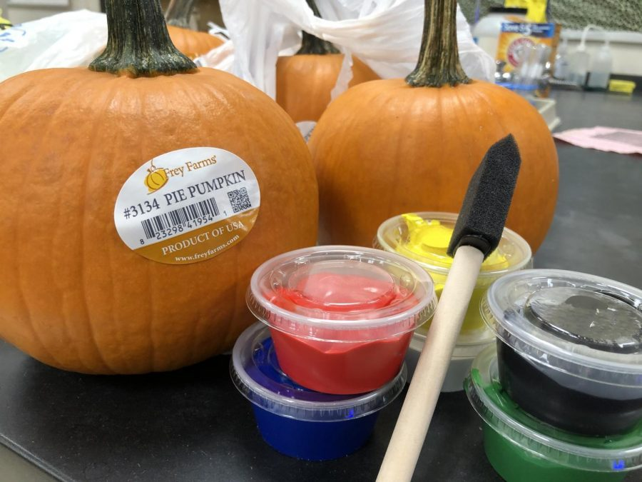The new pumpkin decorating contest will take place during the week of Oct. 21-25 in PRIDE Time. On the 25th, the finished projects will be judged. Each PRIDE Time will choose one of their four pumpkins to represent their class against the other PRIDE Times' pumpkins.