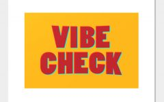 QUIZ: Do you pass your vibe check?