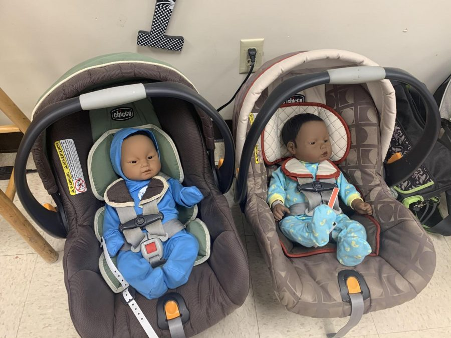 A RealCare Baby is an advanced infant care simulator. Instructor Sue Tebo currently has four babies available for students to take home in Family Studies.