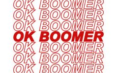It has been debated whether the phrase 'okay boomer' should be used.