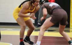 Girls wrestling placed fourth overall with 36 points.