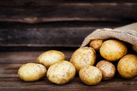Potatoes are the best food!